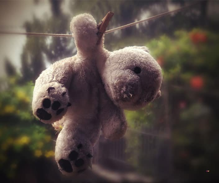 Featured image of teddy bear on wire