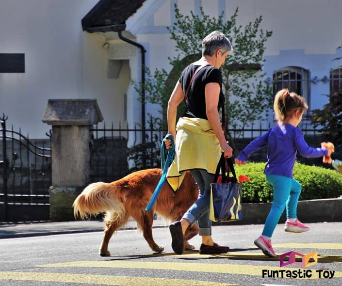 Image of older woman and little girl walking dog
